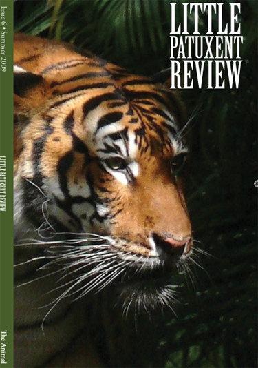 LPR Issue 6