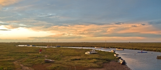 The Blakeney salt marsh. (Photo: Gerry Balding)