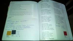 A peek inside LPR Poetry Editor Laura Shovan's journal.
