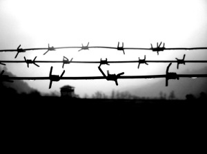 prison walls