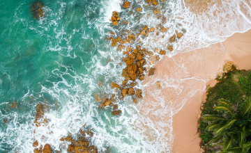birds-eye view of a tropical island - waves crashing on a sandy beach with a stand of palm trees and grasses in the right-hand corner